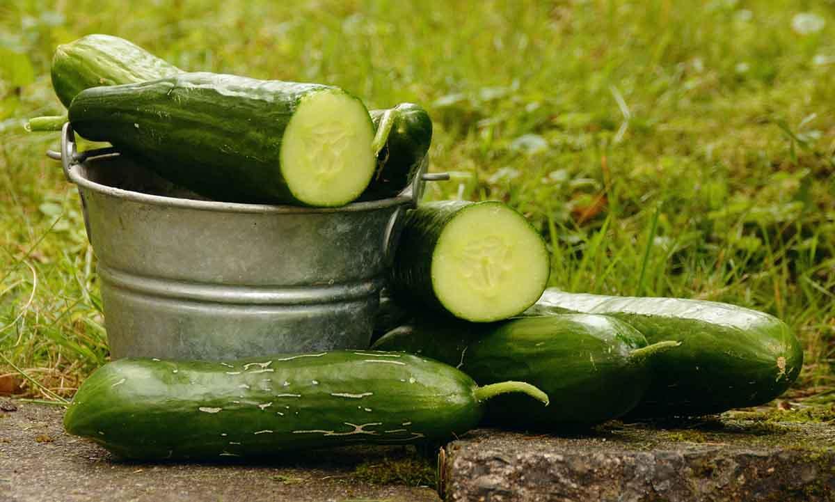 10 tipov ako ušetriť a pritom jesť zdravo