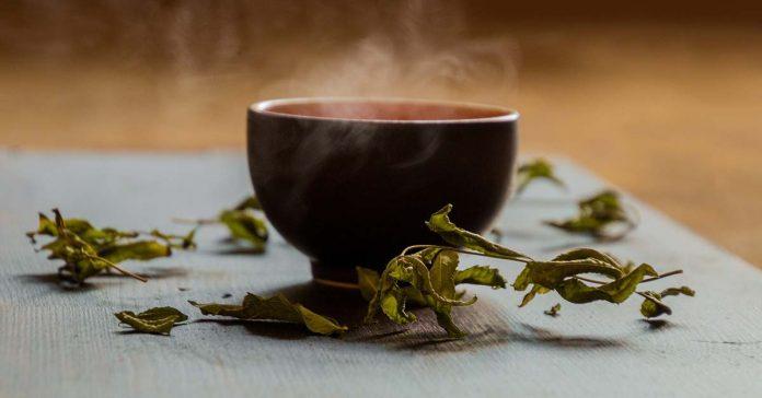 6 zdravotných prínosov zeleného čaju pre športovcov
